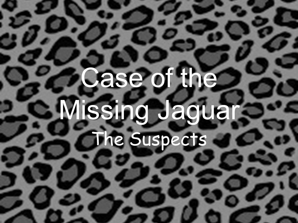 Case of the Missing Jaguar The Suspects