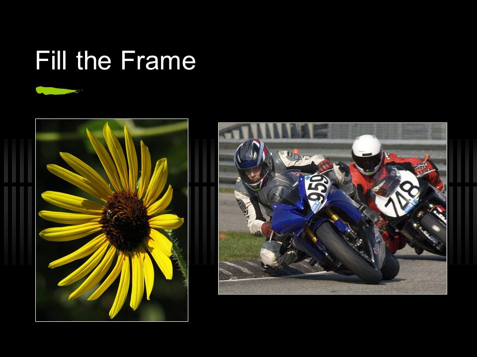 Fill the Frame