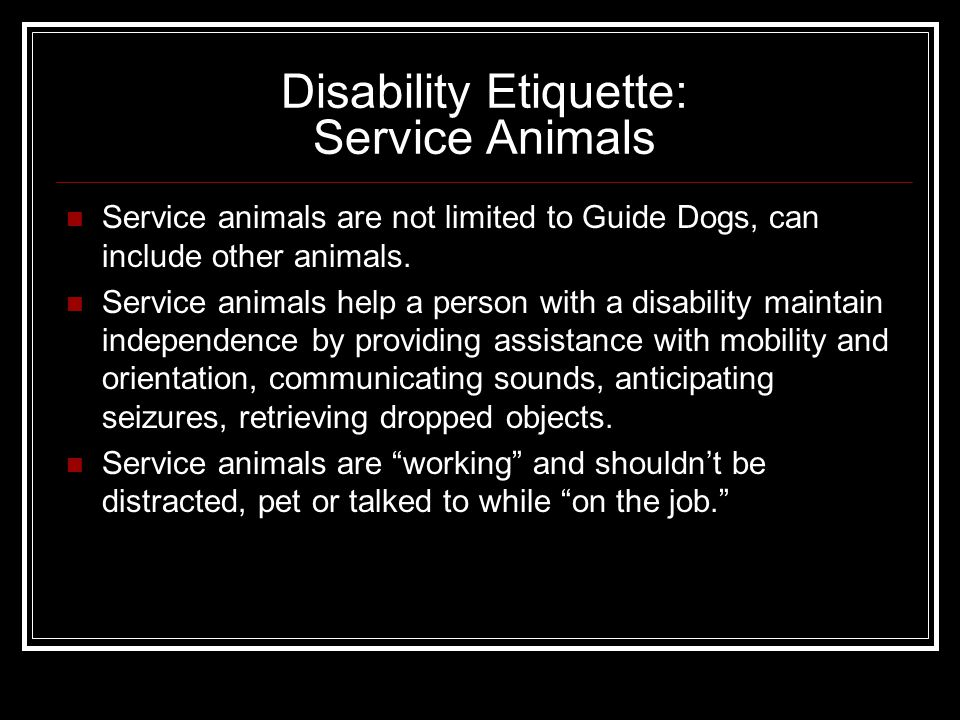 Disability Etiquette: Service Animals Service animals are not limited to Guide Dogs, can include other animals.