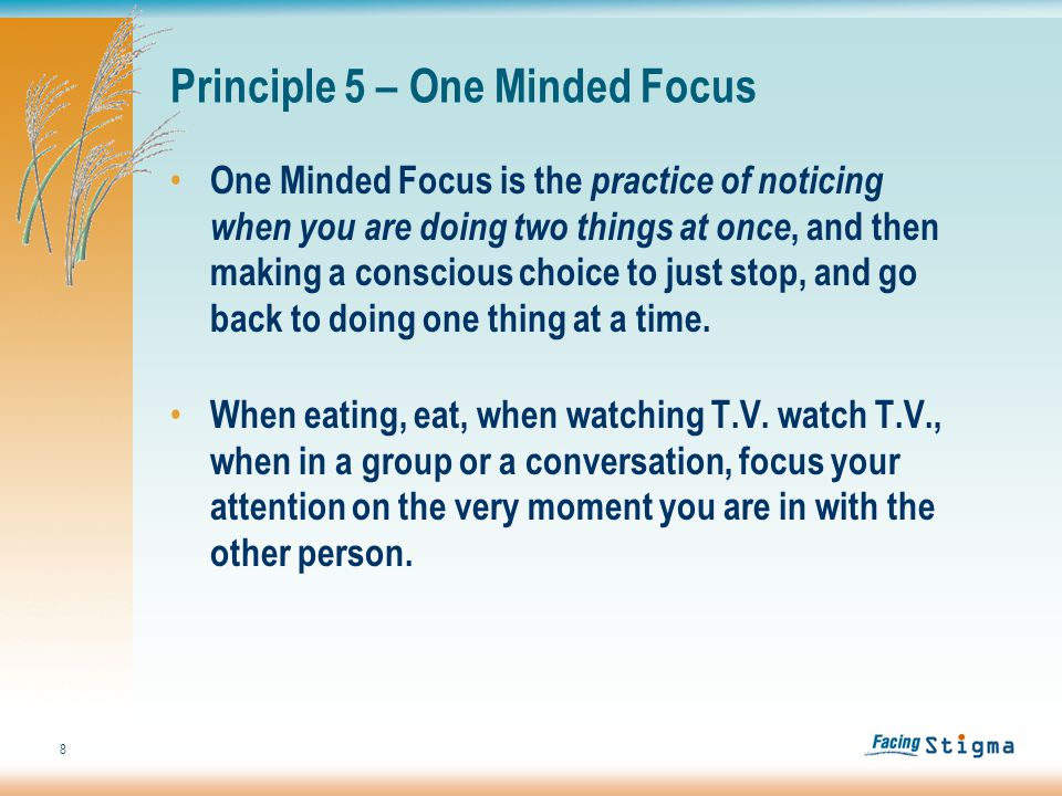 8 Principle 5 – One Minded Focus One Minded Focus is the practice of noticing when you are doing two things at once, and then making a conscious choice to just stop, and go back to doing one thing at a time.