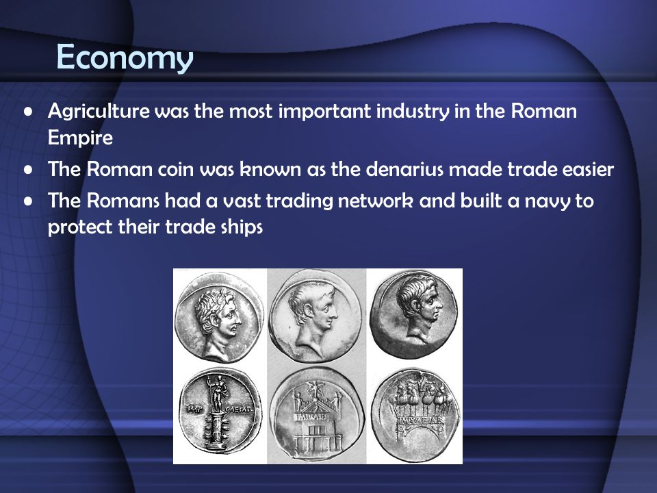 Economy Agriculture was the most important industry in the Roman Empire The Roman coin was known as the denarius made trade easier The Romans had a va