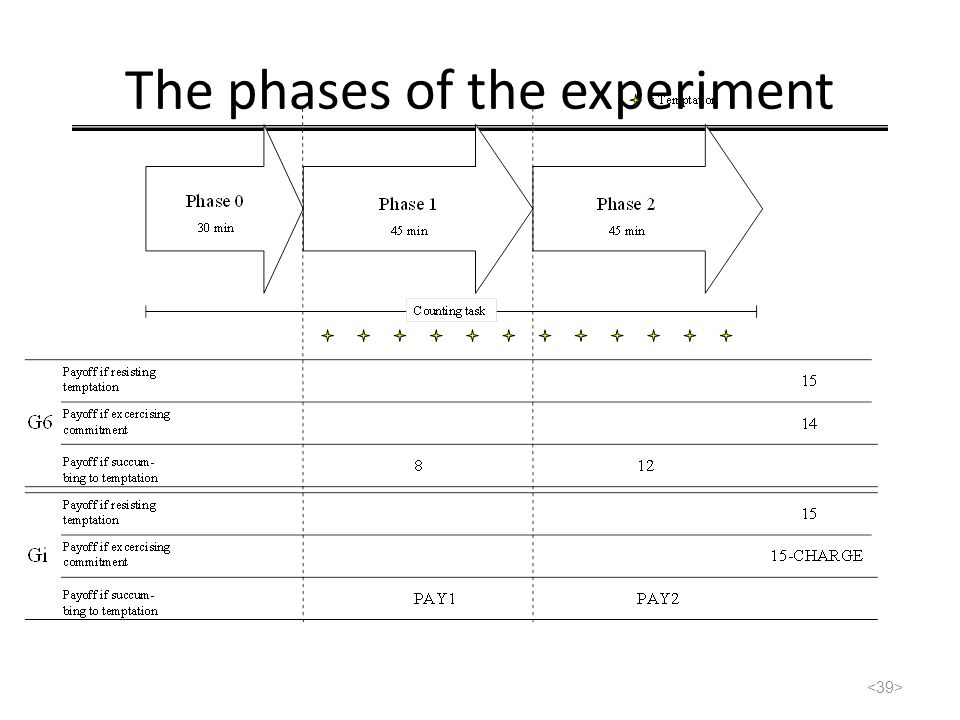 The phases of the experiment