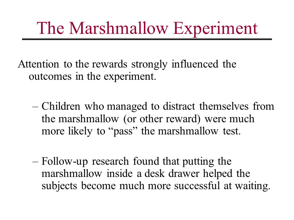 Marshmallow Experiment with Aduluts.