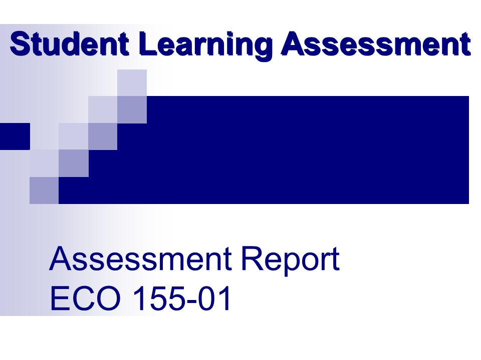 Assessment Report ECO 155-01 Student Learning Assessment