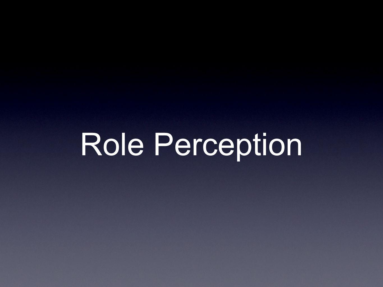 Role Perception