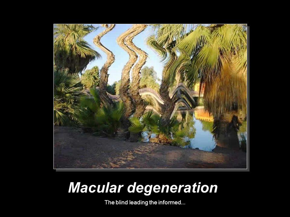 The blind leading the informed... Macular degeneration