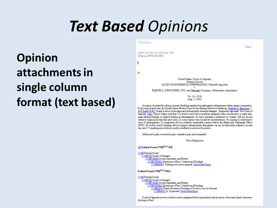 Text Based Opinions Opinion attachments in single column format (text based)