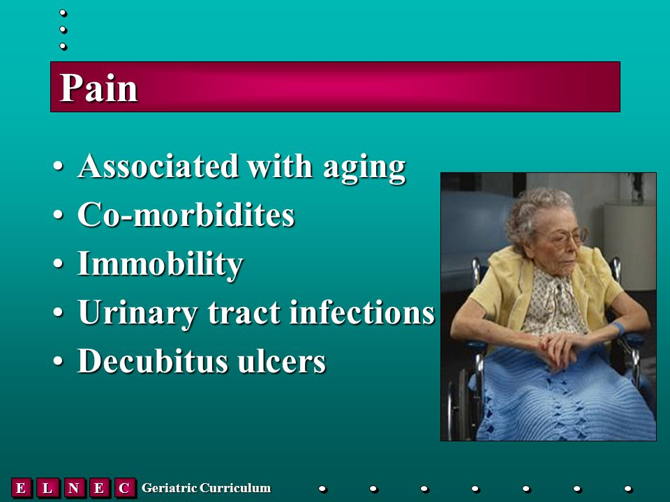 EELLNNEECC Geriatric Curriculum Pain Associated with agingAssociated with aging Co-morbiditesCo-morbidites ImmobilityImmobility Urinary tract infectionsUrinary tract infections Decubitus ulcersDecubitus ulcers