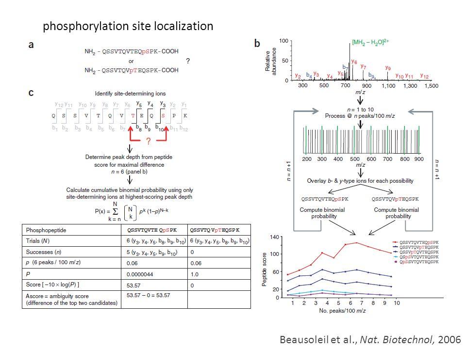 phosphorylation site localization Beausoleil et al., Nat. Biotechnol, 2006