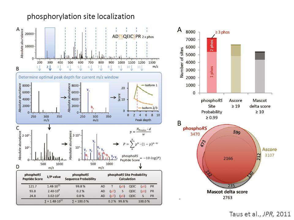 phosphorylation site localization Taus et al., JPR, 2011