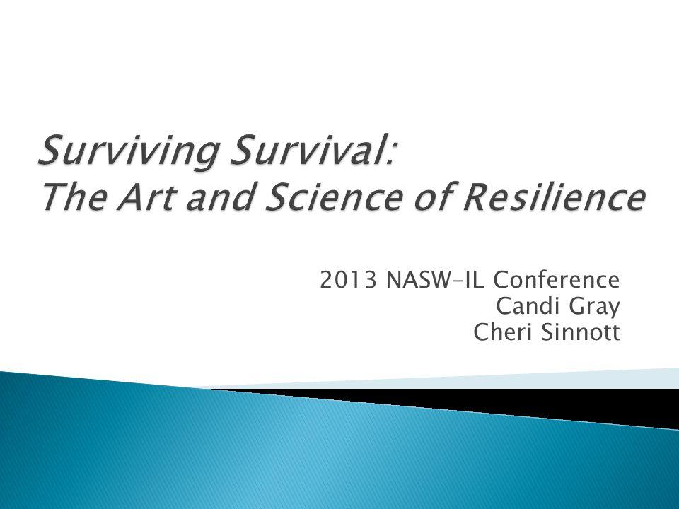 2013 NASW-IL Conference Candi Gray Cheri Sinnott