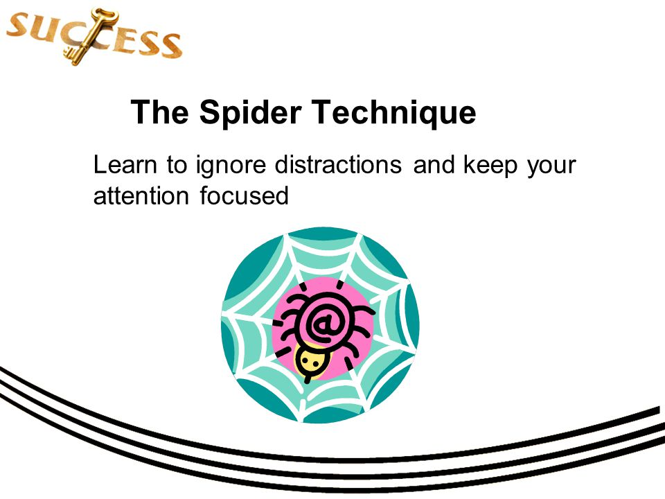 The Spider Technique Learn to ignore distractions and keep your attention focused