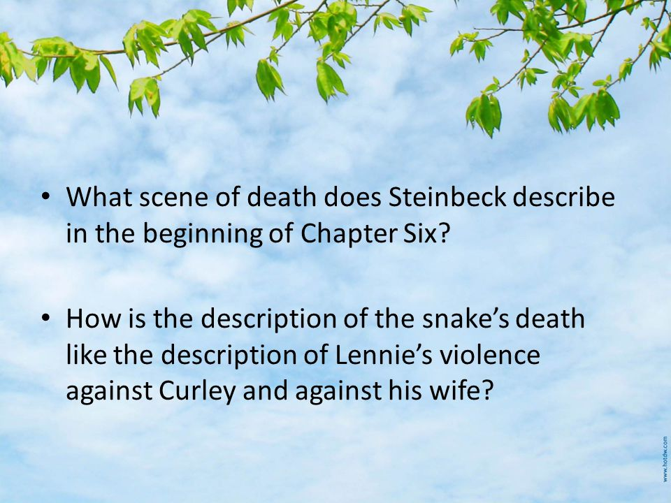 What scene of death does Steinbeck describe in the beginning of Chapter Six.