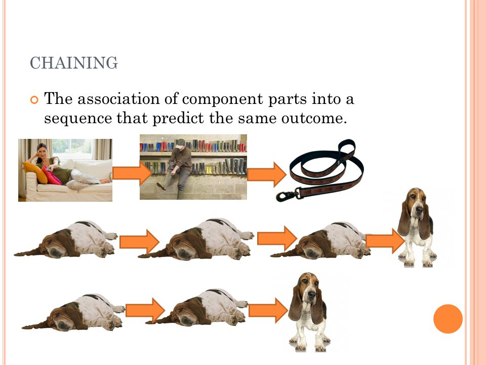 CHAINING The association of component parts into a sequence that predict the same outcome.