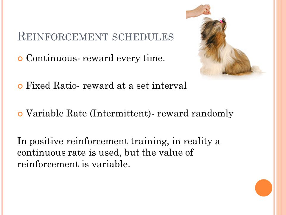 R EINFORCEMENT SCHEDULES Continuous- reward every time. Fixed Ratio- reward at a set interval Variable Rate (Intermittent)- reward randomly In positiv
