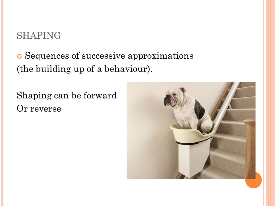 SHAPING Sequences of successive approximations (the building up of a behaviour). Shaping can be forward Or reverse