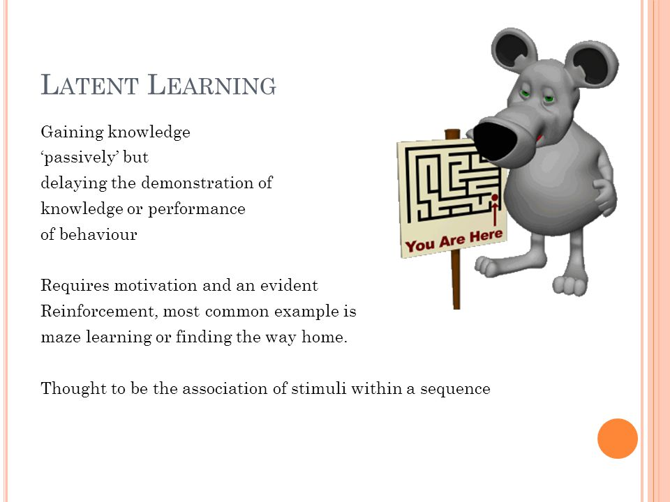 L ATENT L EARNING Gaining knowledge 'passively' but delaying the demonstration of knowledge or performance of behaviour Requires motivation and an evident Reinforcement, most common example is maze learning or finding the way home.