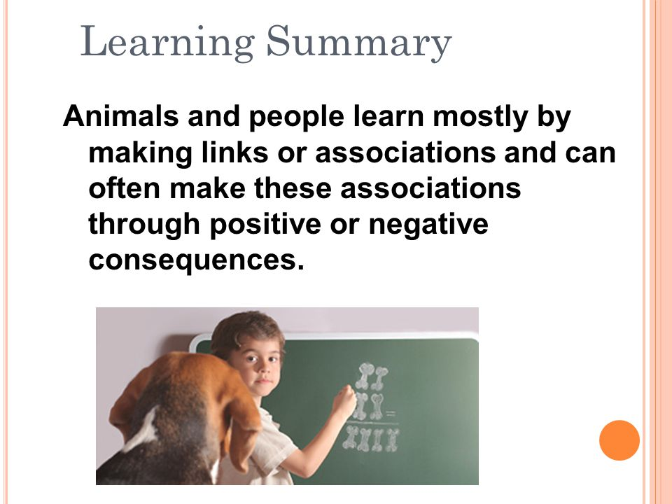 Animals and people learn mostly by making links or associations and can often make these associations through positive or negative consequences.