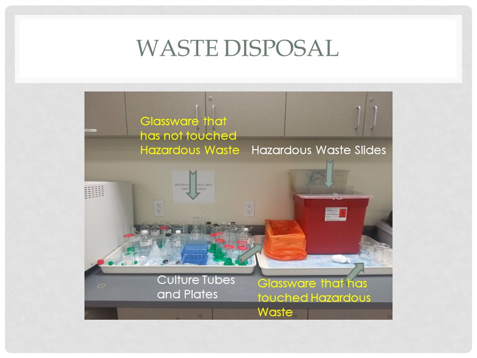 WASTE DISPOSAL Glassware that has not touched Hazardous Waste Culture Tubes and Plates Hazardous Waste Slides Glassware that has touched Hazardous Waste