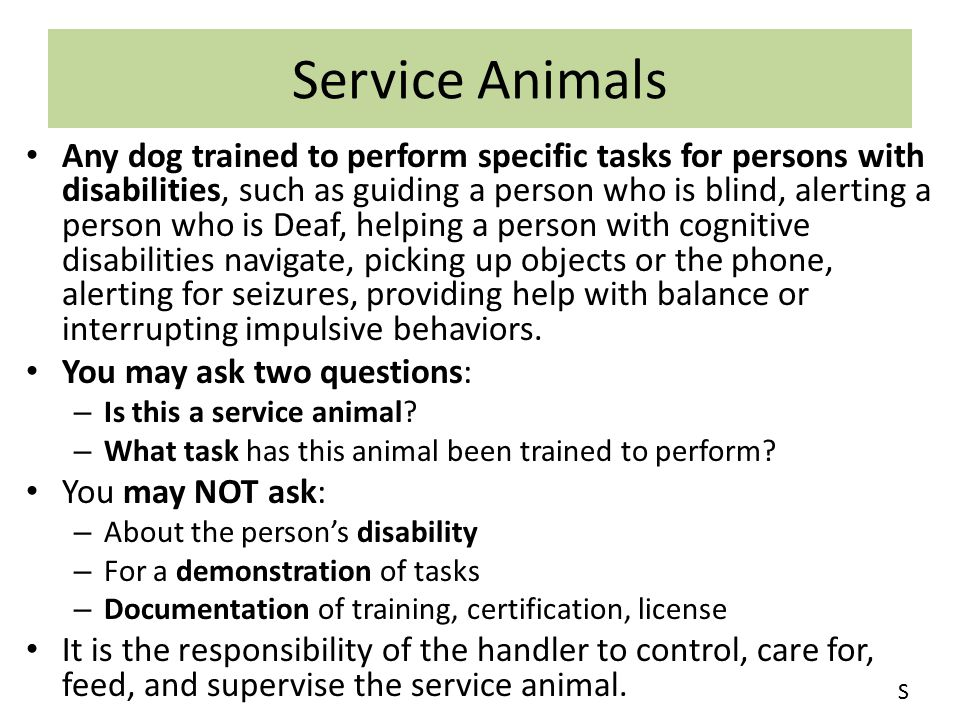 Service Animals Any dog trained to perform specific tasks for persons with disabilities, such as guiding a person who is blind, alerting a person who