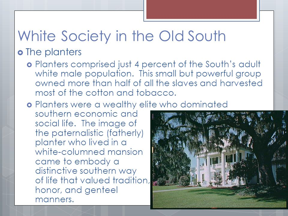 White Society in the Old South  The planters  Planters comprised just 4 percent of the South's adult white male population.