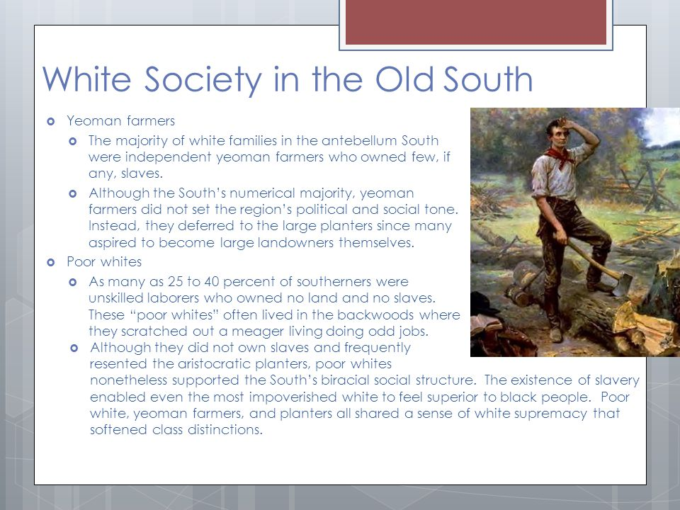 White Society in the Old South  Yeoman farmers  The majority of white families in the antebellum South were independent yeoman farmers who owned few, if any, slaves.