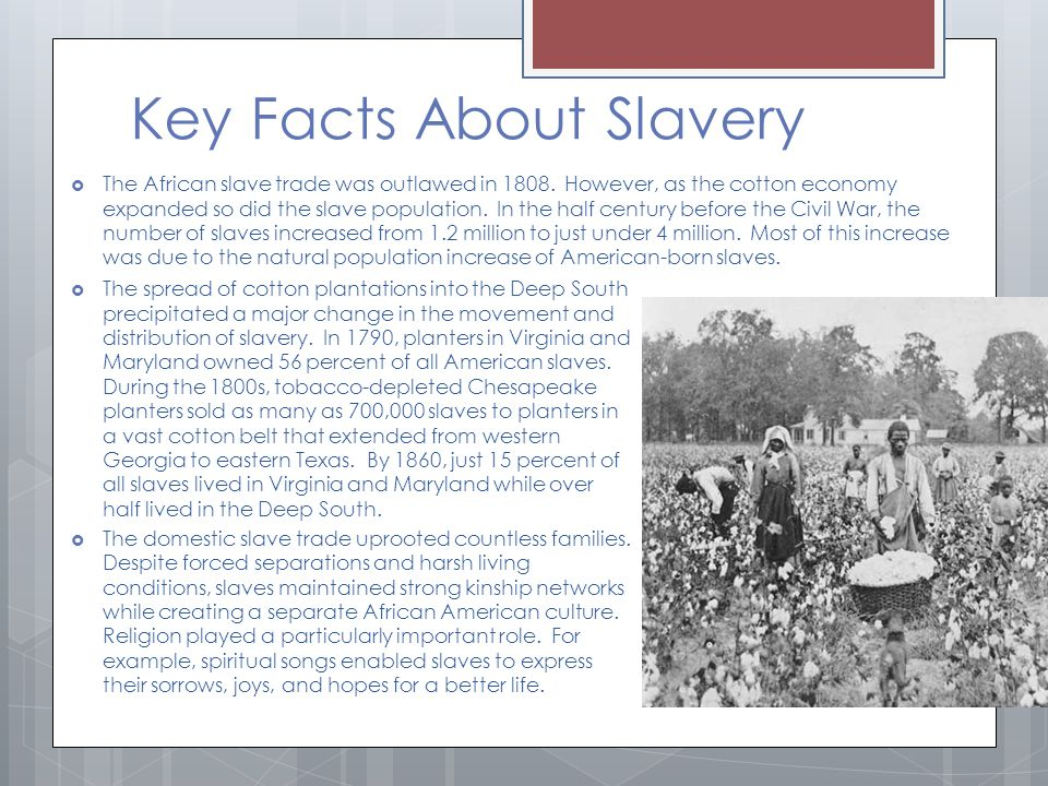 Key Facts About Slavery  The African slave trade was outlawed in 1808.