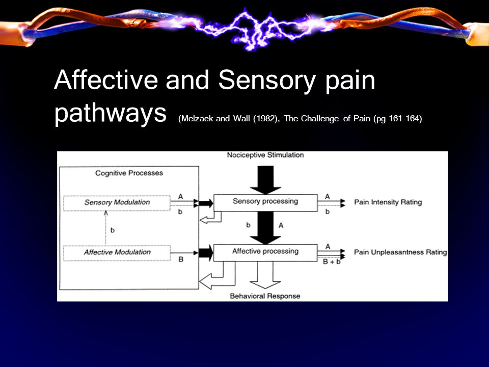 Affective and Sensory pain pathways (Melzack and Wall (1982), The Challenge of Pain (pg 161-164)