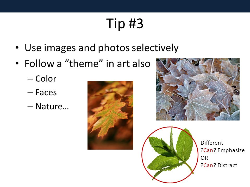 Tip #3 Use images and photos selectively Follow a theme in art also – Color – Faces – Nature… Different Can.