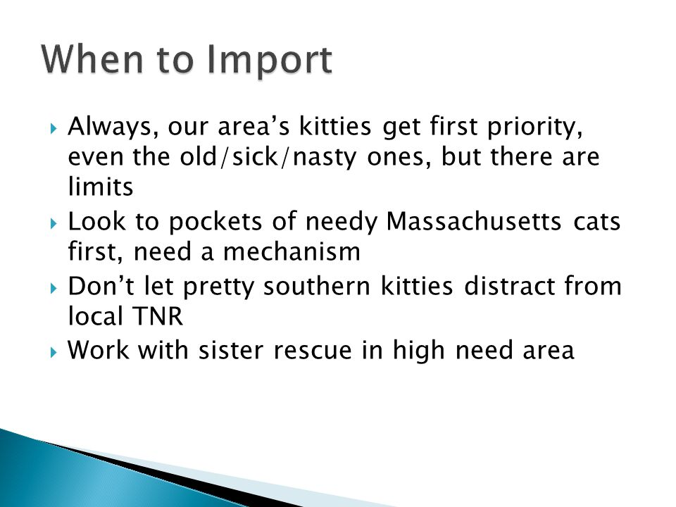  Always, our area's kitties get first priority, even the old/sick/nasty ones, but there are limits  Look to pockets of needy Massachusetts cats first, need a mechanism  Don't let pretty southern kitties distract from local TNR  Work with sister rescue in high need area