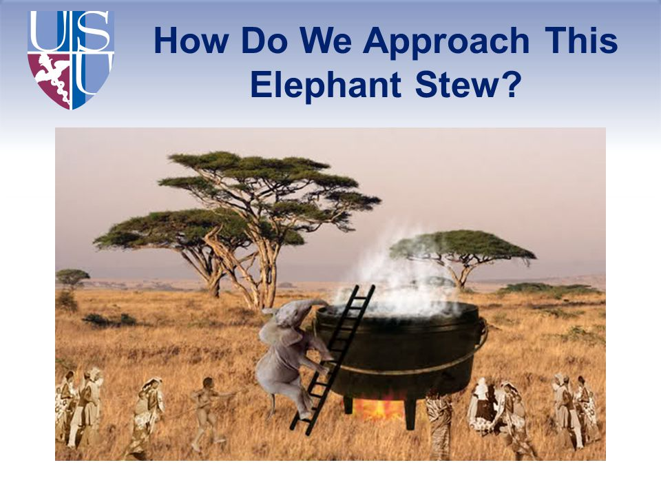 How Do We Approach This Elephant Stew?