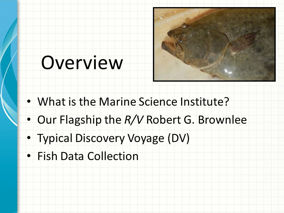 Overview What is the Marine Science Institute. Our Flagship the R/V Robert G.