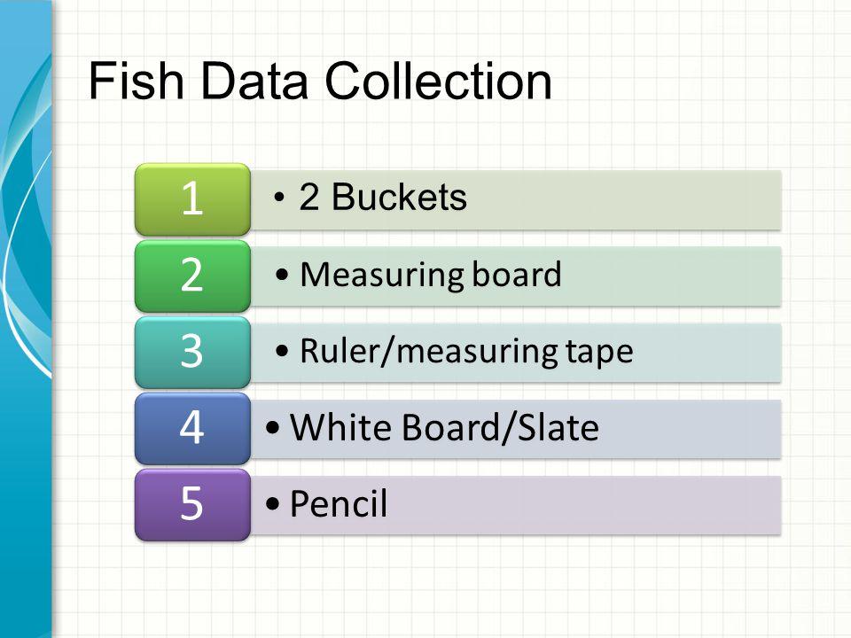 2 Buckets 1 Measuring board 2 Ruler/measuring tape 3 White Board/Slate 4 Pencil 5 Fish Data Collection