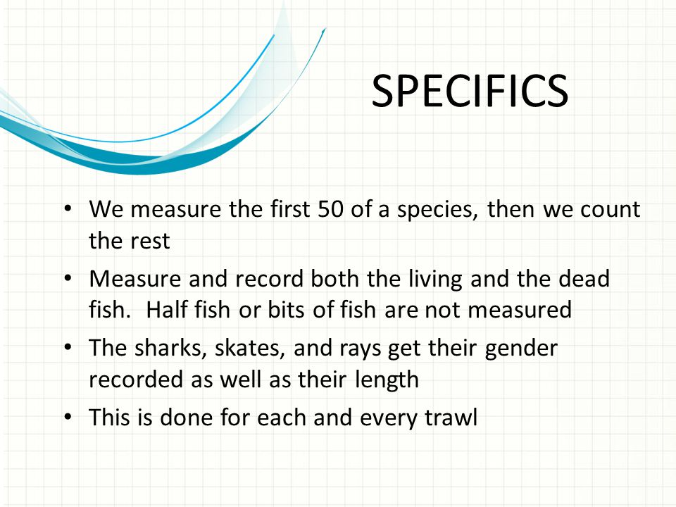 SPECIFICS We measure the first 50 of a species, then we count the rest Measure and record both the living and the dead fish.