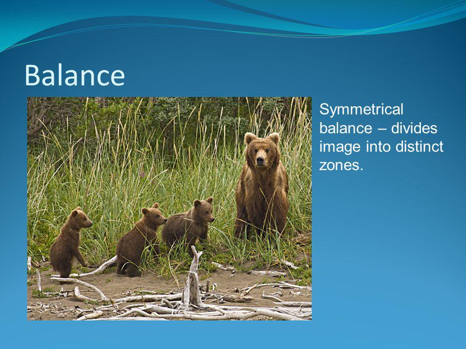 Balance Symmetrical balance – divides image into distinct zones.