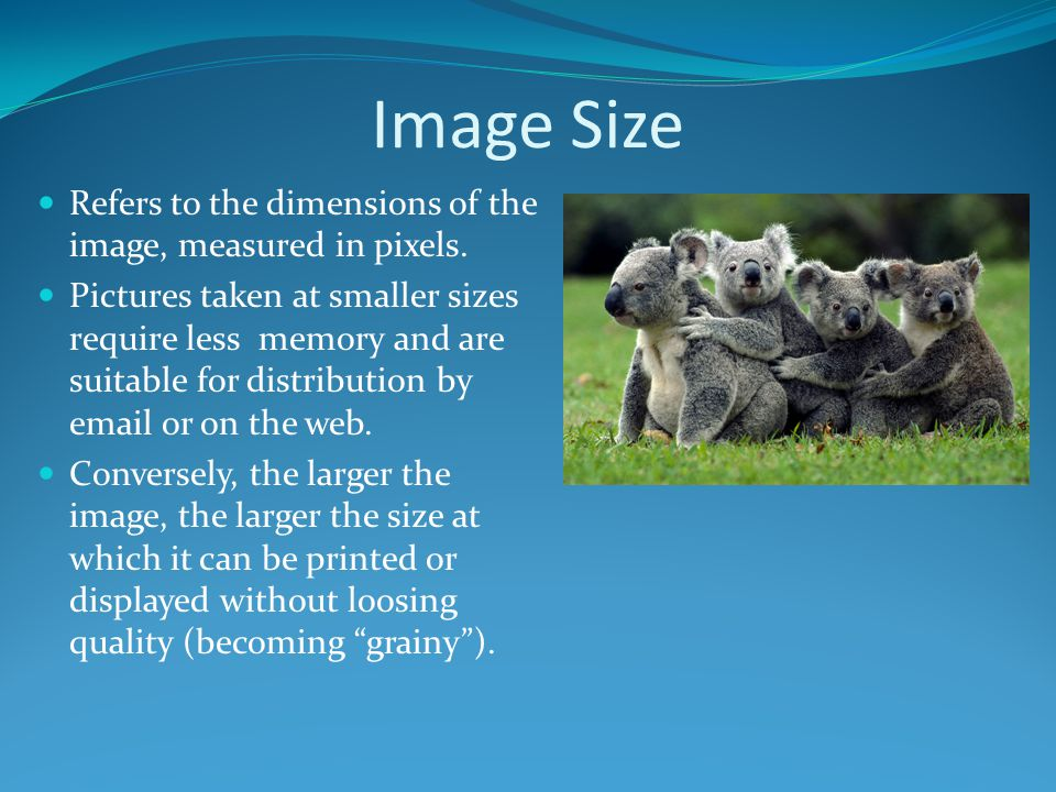 Image Size Refers to the dimensions of the image, measured in pixels. Pictures taken at smaller sizes require less memory and are suitable for distrib