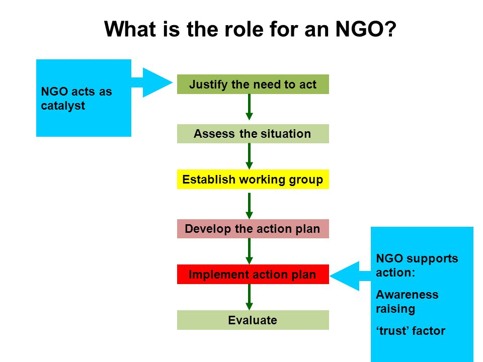 What is the role for an NGO.