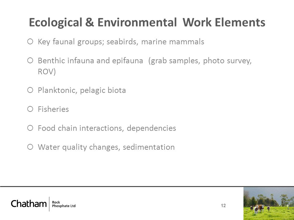 Ecological & Environmental Work Elements  Key faunal groups; seabirds, marine mammals  Benthic infauna and epifauna (grab samples, photo survey, ROV)  Planktonic, pelagic biota  Fisheries  Food chain interactions, dependencies  Water quality changes, sedimentation 12