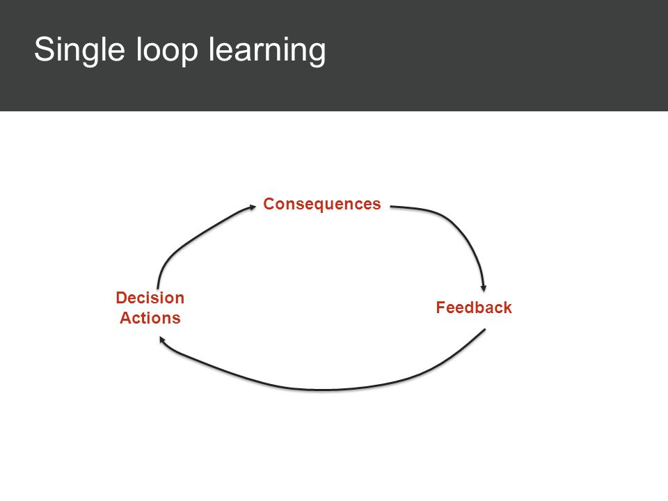 Single loop learning Consequences Feedback Decision Actions