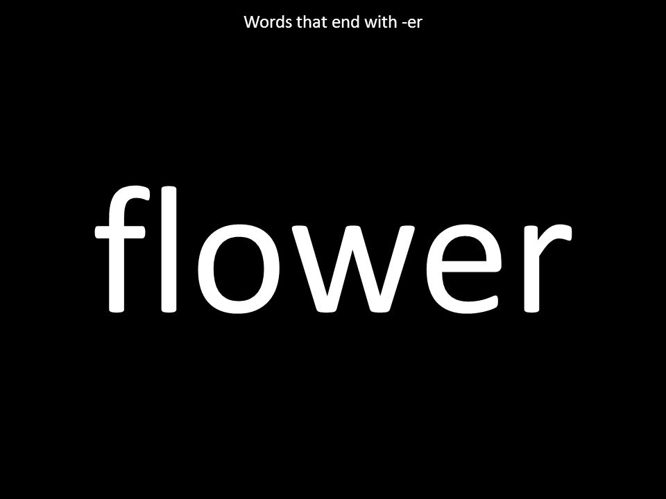 flower Words that end with -er