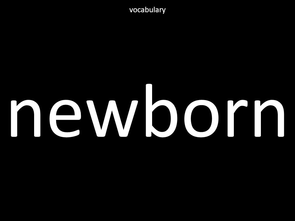 newborn vocabulary