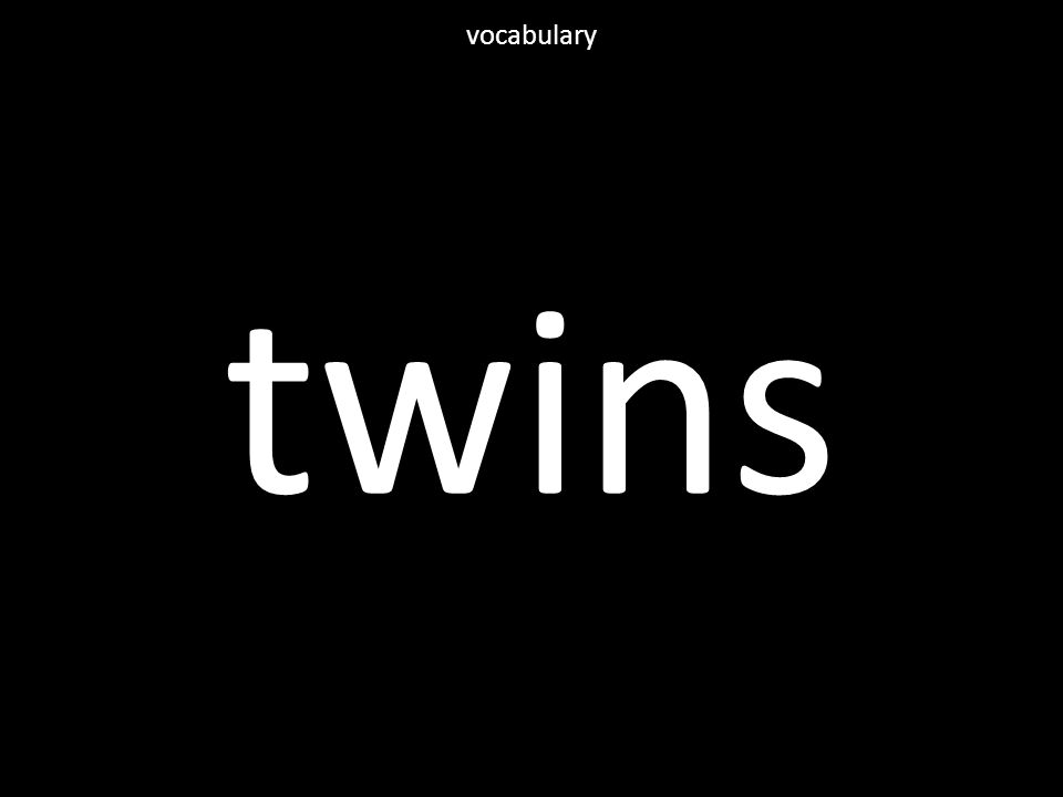 twins vocabulary