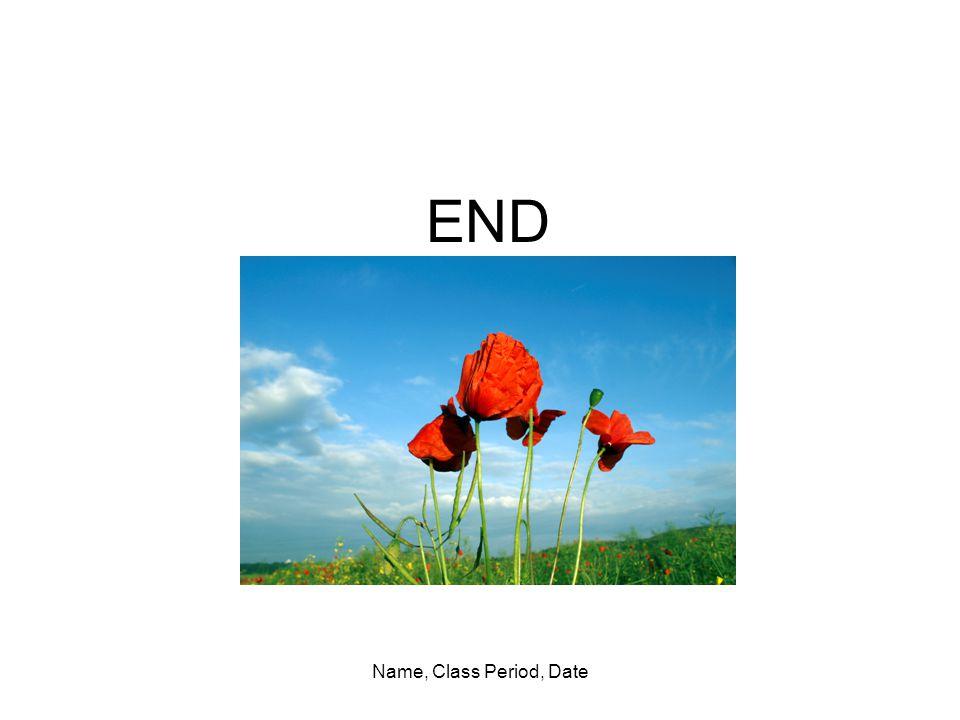 Name, Class Period, Date END