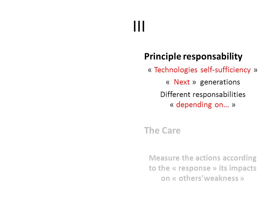 III Principle responsability « Technologies self-sufficiency » « Next » generations Different responsabilities « depending on… » The Care Measure the