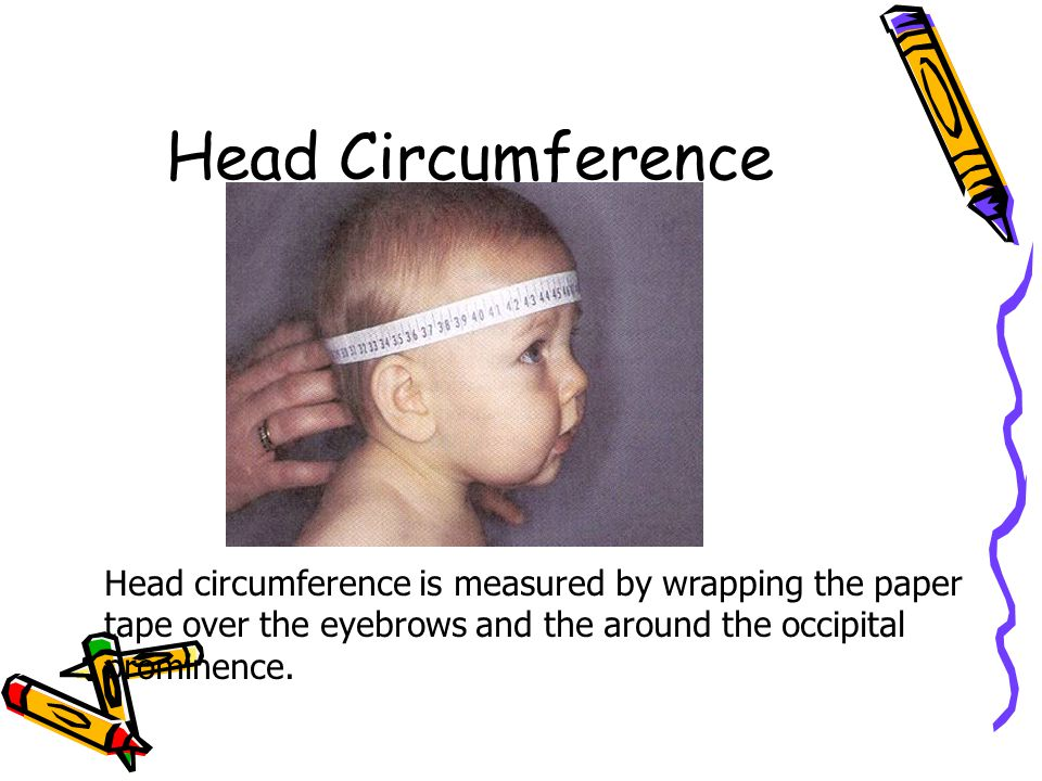 Head Circumference Head circumference is measured by wrapping the paper tape over the eyebrows and the around the occipital prominence.