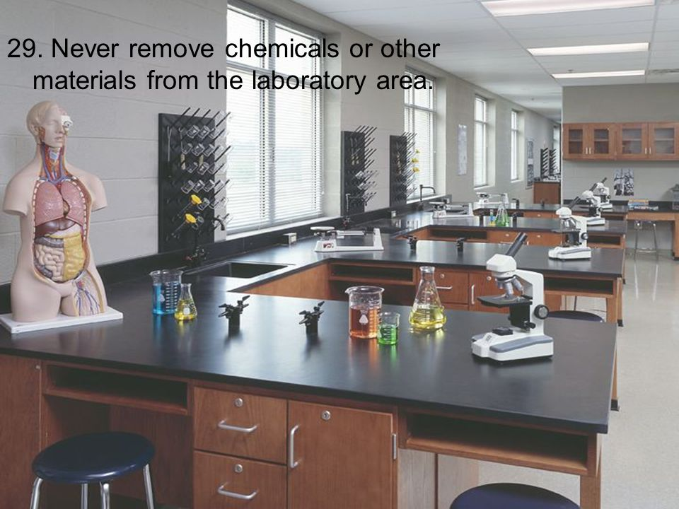 29. Never remove chemicals or other materials from the laboratory area.