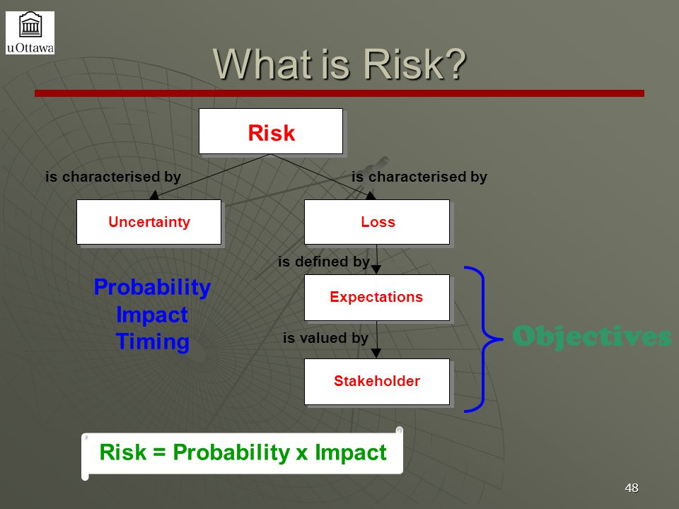 48 What is Risk.