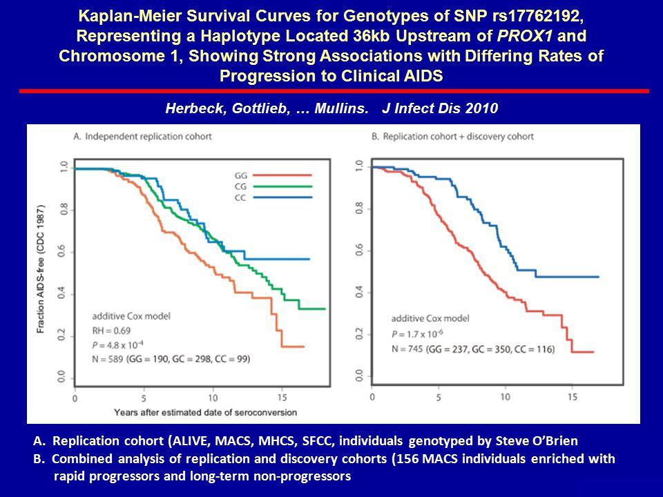 A. Replication cohort (ALIVE, MACS, MHCS, SFCC, individuals genotyped by Steve O'Brien B.