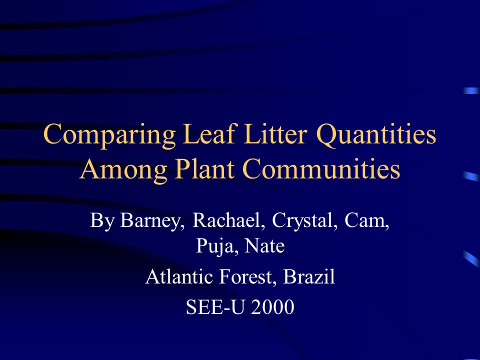 Comparing Leaf Litter Quantities Among Plant Communities By Barney, Rachael, Crystal, Cam, Puja, Nate Atlantic Forest, Brazil SEE-U 2000