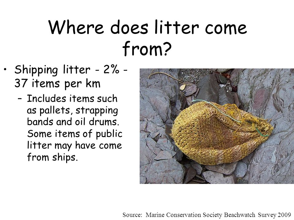 Where does litter come from.